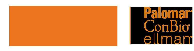 logo_CynosureNew